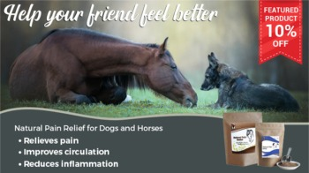 Save 10% off Natural Pain Relief for Horses and Dogs