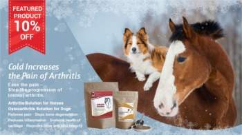10% Off Arthritis for horses and Osteoarthrits for dogs