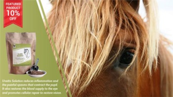 Save 10% Off Uveitis for Horses
