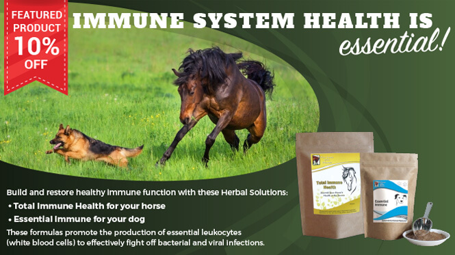 10% Off Total Immune Health for horses and Essential Immune for dogs