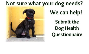 Dog Health Questionnaire