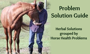 Problem Solution Guide