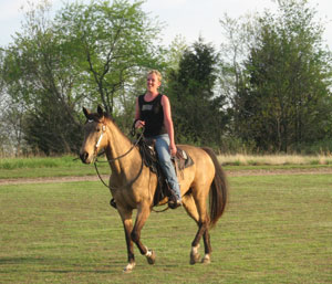 Grace of Gold - 10 year old Kentucky  Mountain horse