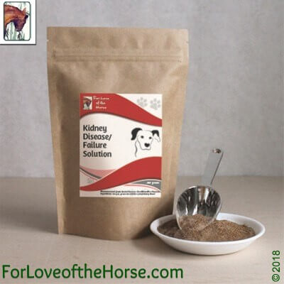 Kidney Disease/Failure Solution for Dogs 290g